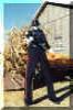 halloween stilt-walker doug hunt toronto
